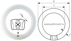 Philips TL-E Circular 32W/33-640 1CT